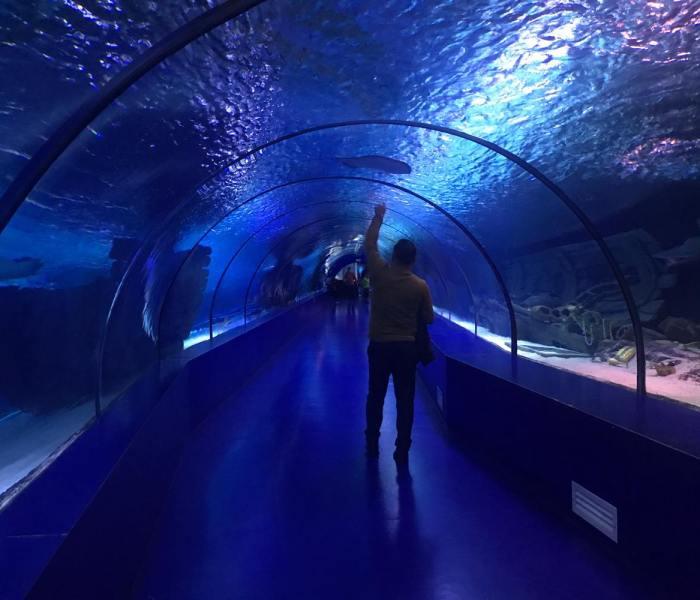 Antalya Aquarium og verdens længste hajtunnel