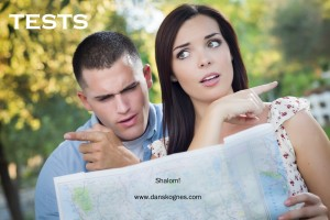 Tests dan skognes motivation blogger speaker teacher trainer coach educator