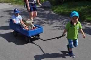 Chariot au zoo de Toronto   danslapoche.ca