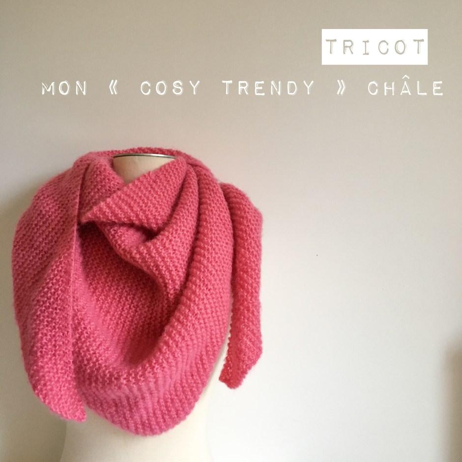 hot-vente authentique acheter convient aux hommes/femmes Pingo Cosy – Le blog de Caro Tricote