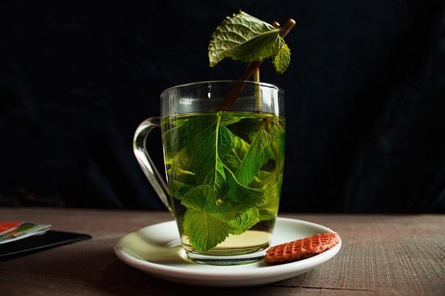 teh hijau bahan herbal cegah rontok