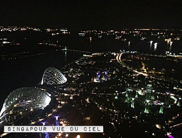 Hotel Marina Bay Sands Singapour skybar