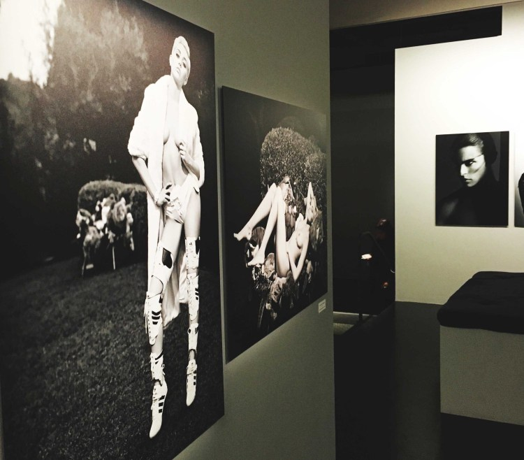 Miley Cyrus Exposition Karl Lagerfeld A visual Journey