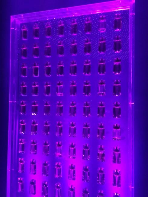 Mur de parfums 10 ans Alien Thierry Mugler avis
