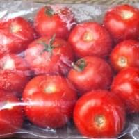 Pour avoir des tomates fraîches et abordables toute l'année