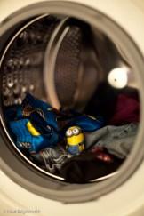 """""""Jour 45 - On dirait que Dave a découvert une nouvelle manière d'utiliser la machine à laver… C'est maintenant son 'spa' personnel.""""(Crédits : Flickr/CC/nealedgeworth)"""