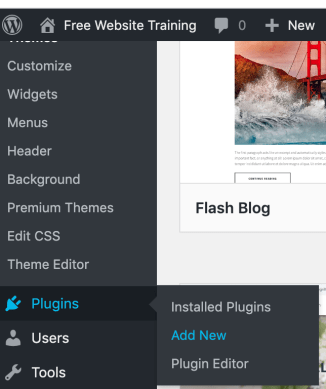 WP plugins section