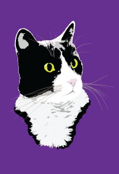 tuxedo cat illustration