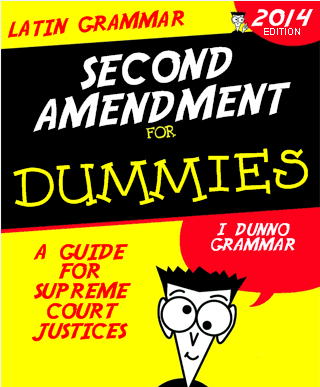 SECOND AMENDMENT FOR DUMMIES
