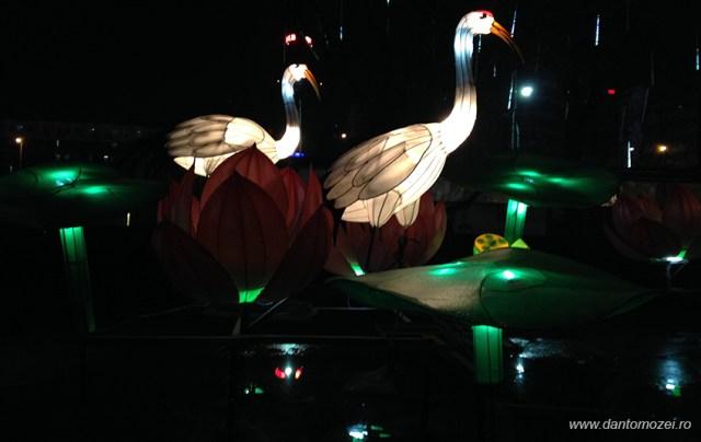 Festivalul Lampioanelor Beijing 2014 6A