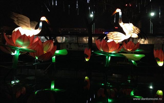 Festivalul Lampioanelor Beijing 2014 6B