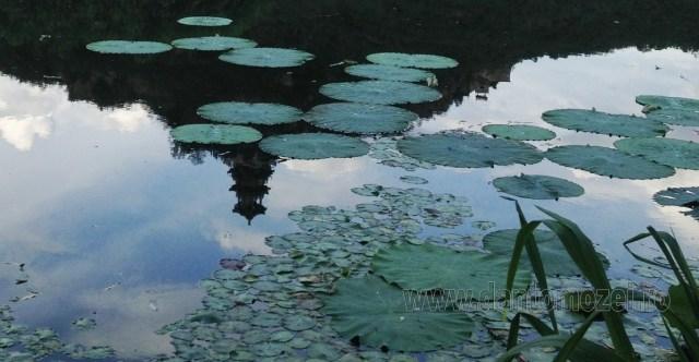 In oglinda lacurilor 3
