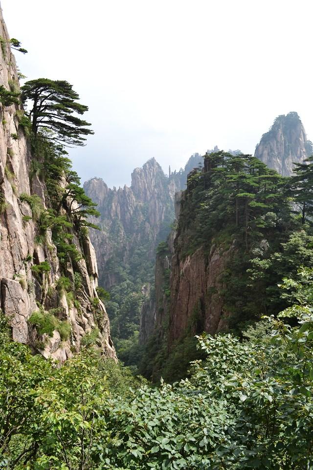 Crestele Muntelui Galben_DanTomozeiRO