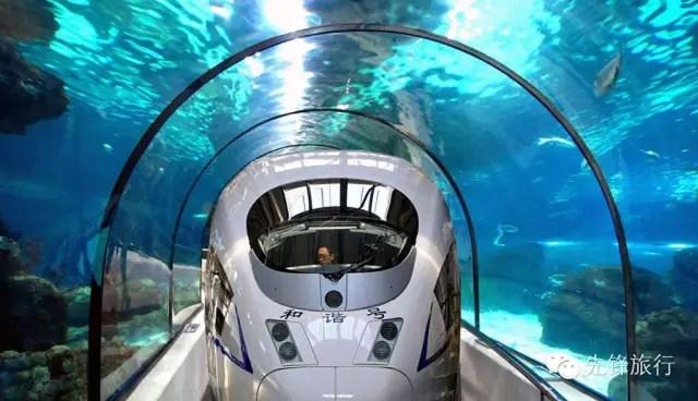 Tren China-SUA 3
