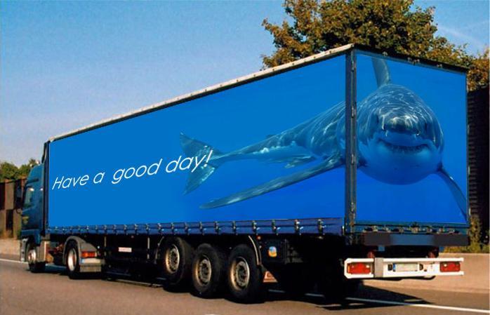 dolphin truck