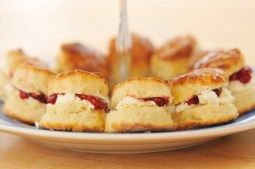 Danyfan Cream Tea
