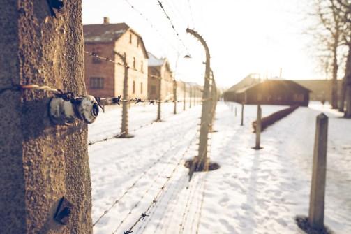 2017-01-22-krakow-green-day-177-edit