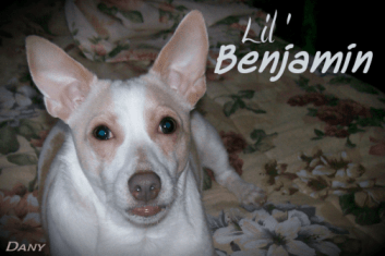 Lil' Benjamin !!!