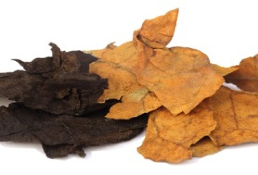 Vape Cellar, la quintessence du tabac à vaper !