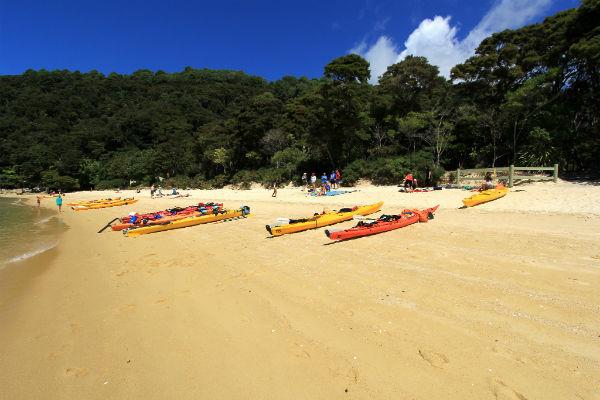 Even pauzeren op het goudgele strand van Bark Bay