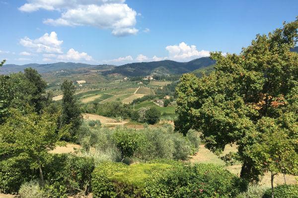 chianti-regio-uitzicht-vanuit-il-castello-toscane-italie-roadtrip