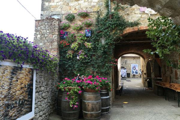 wijn-in-chianti-regio-toscane-italie-roadtrip