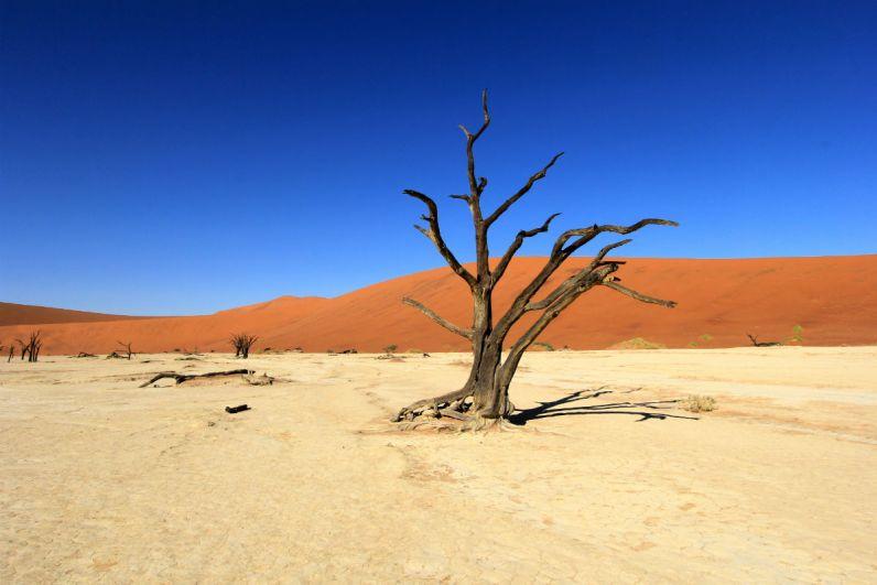 De Sossusvlei in Namibie is een prachtige bezienswaardigheid
