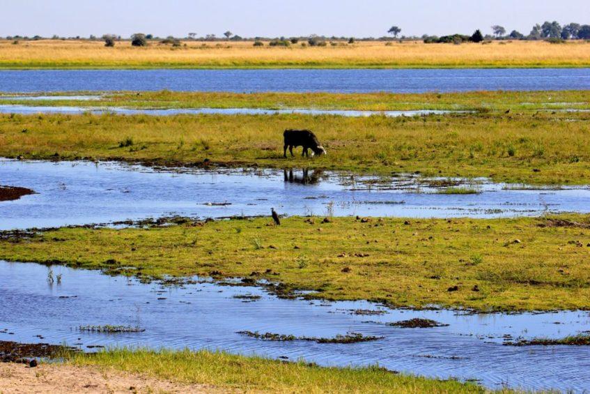 Praktische Botswana tips: voorbereid reizen met 4x4 door Botswana