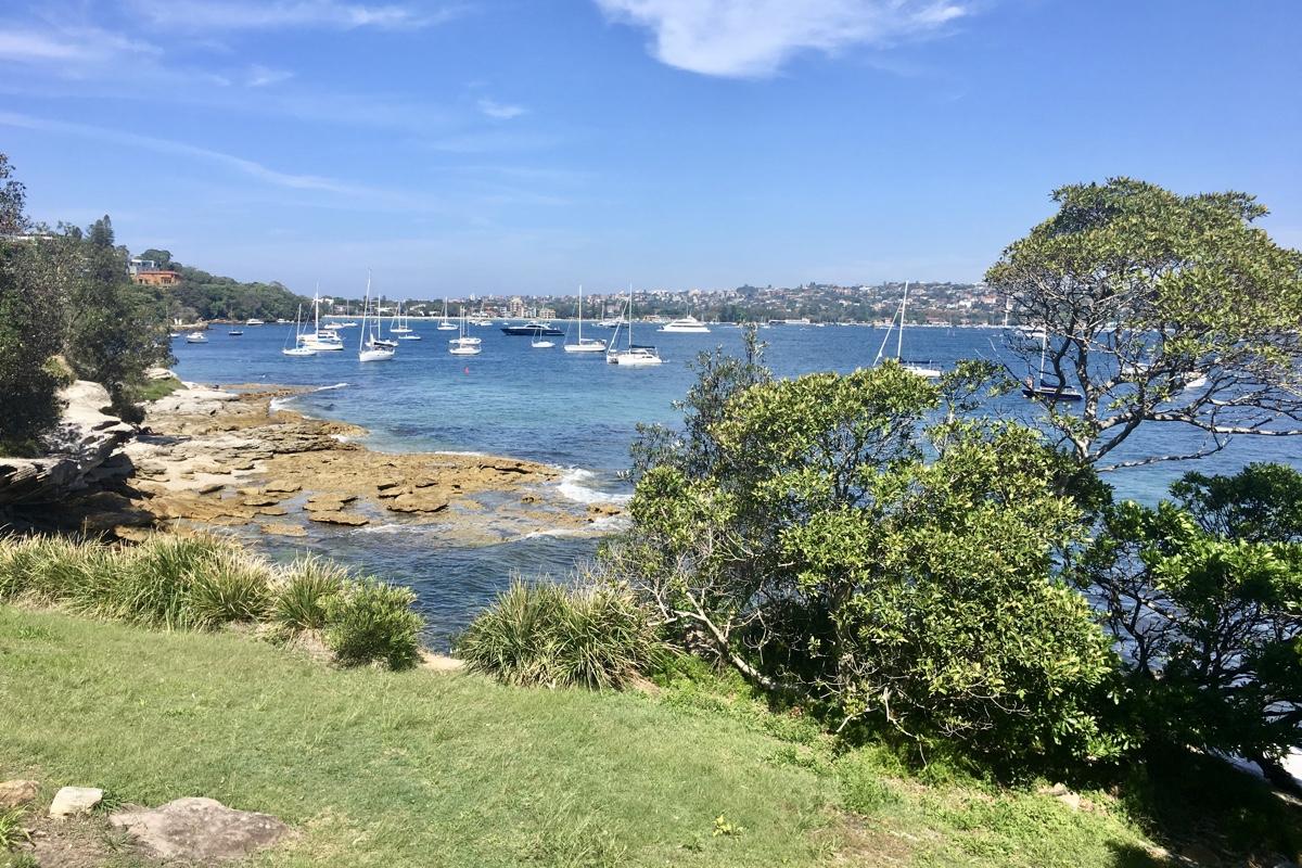 To do in Sydney wandel van Rose Bay naar Watson Bay en geniet van de uitzichten