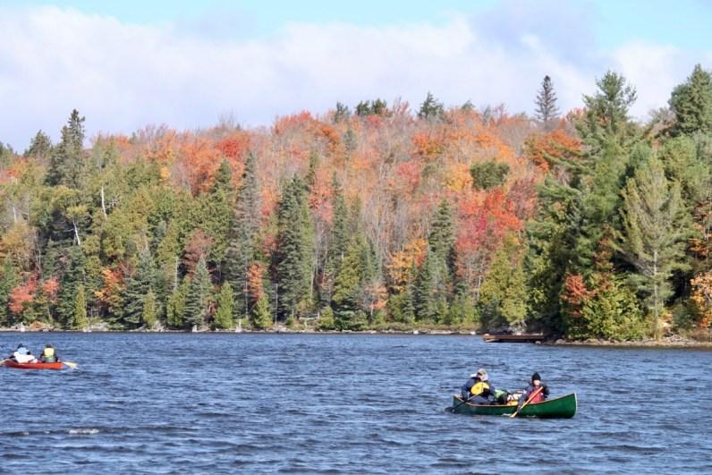Bezoek tijdens je 2 weekse route Canada & New York zeker Algonquin Provincial Park