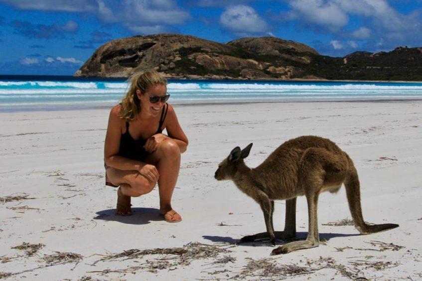 En kangoeroe behoort zeker tot de 16 unieke dieren in Australië