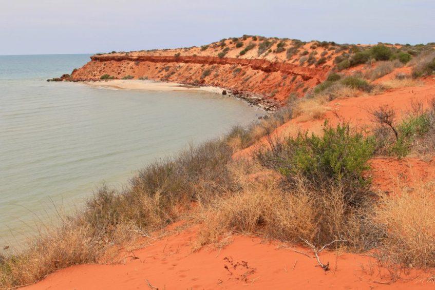 Francois Peron National Park mag je niet missen tijdens jouw roadtrip langs de westkust van Australie