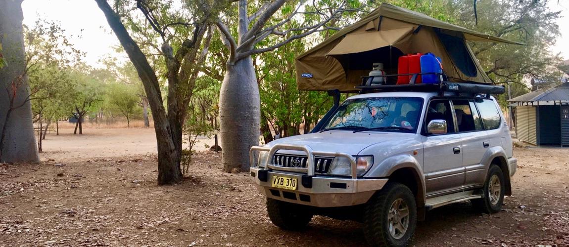 Baobab bomen langs de Gibb River Road