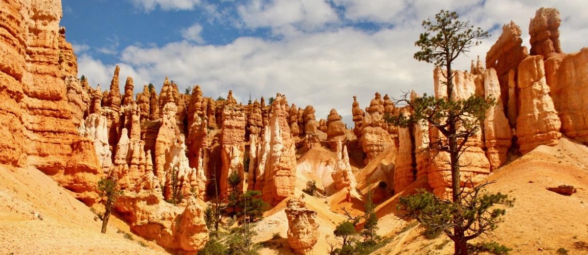 De 8 mooiste nationale parken van West-Amerika