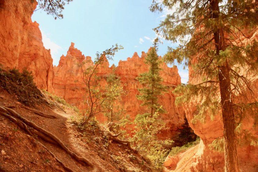 Wandelen in Bryce Canyon NP