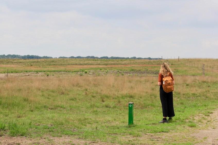 Het Nationale Park de Hoge Veluwe is een prachtig wandelgebied