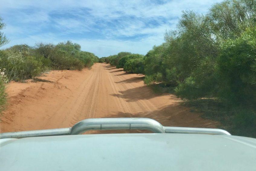 Francois Peron National Park mag je niet missen tijdens jouw route West-Australië