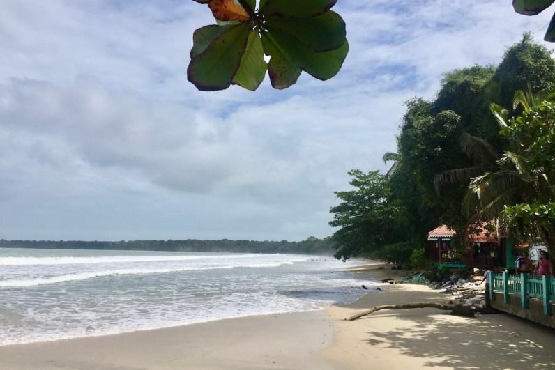 Cahuita National Park in Costa Rica is mooi voor het spotten van wilde dieren