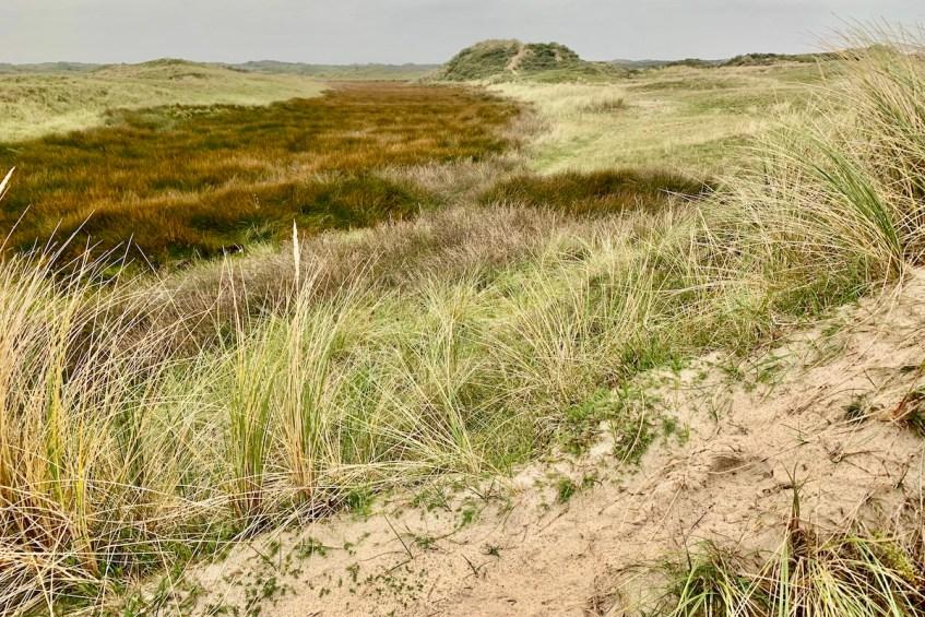 Wandelen op Texel is een activiteit die je zeker moet doen op Texel