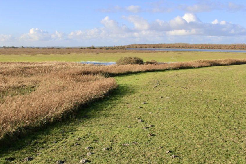 Wat te doen in de provincie Groningen? Bezoek Nationaal Park Lauwersmeer en je zult het prachtig vinden.