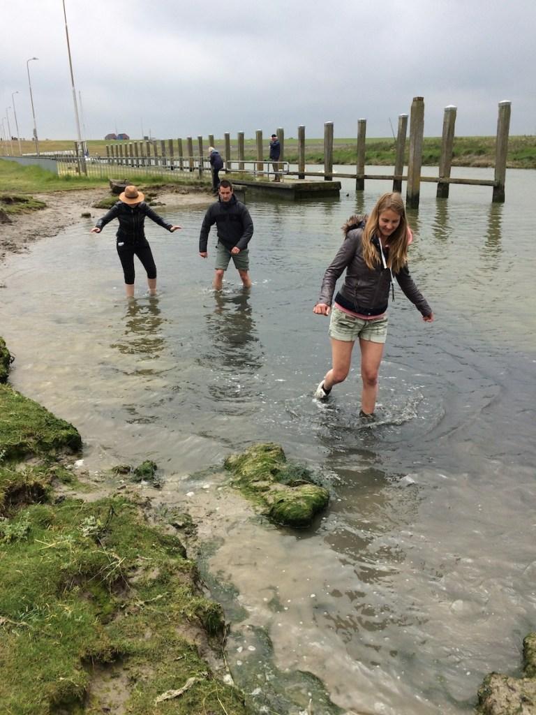 Wadlopen bij Noordpolderzijl: doen in de provincie Groningen