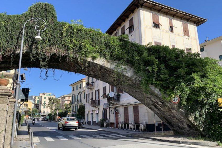 Italiaanse Bloemenrivièra: Rapallo is zeker een van de mooiste stadjes langs de Riviera di Levante