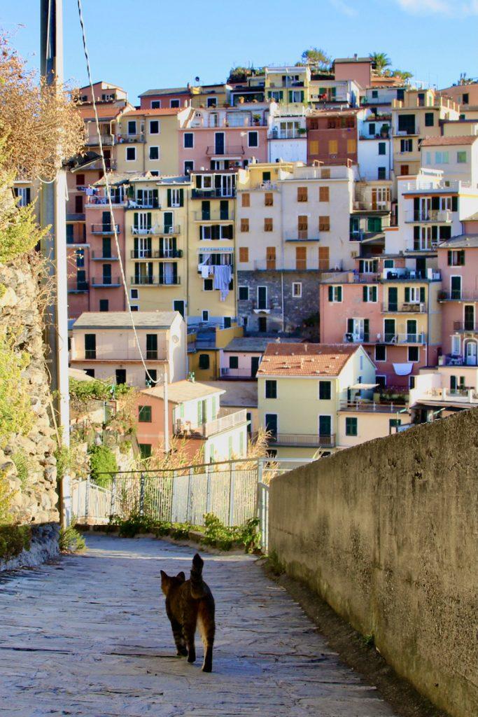Cinque Terre is absoluut een van de mooiste plekjes van Italië