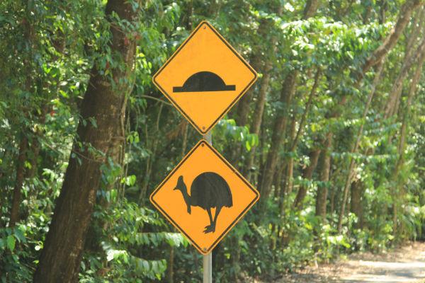 Australian Road Signs in Daintree National Park