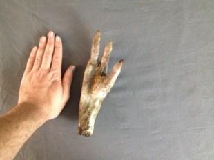 alien hand 93