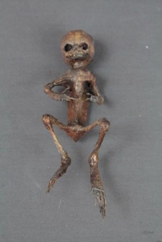 frog boy_9248