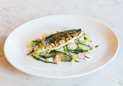 grilled-fillet-of-cornish-mackerel-oyster-pickled-cucumber-dill-radish