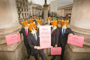 Budget Day Cheeky Fox hi res-33