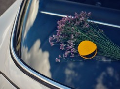 NEW Acqua di Parma Car Diffuser (Lifestyle) Credit Tuala Hjarno @gamfratesi (7)