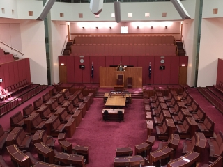 The Senate in the New Parliament